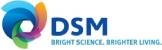 dsm (2)